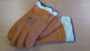 Isolated gloves CryoPro